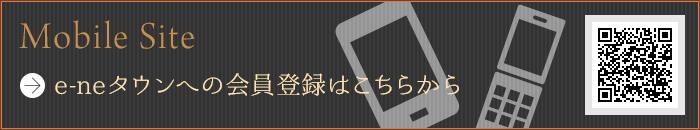 e-ne_banner